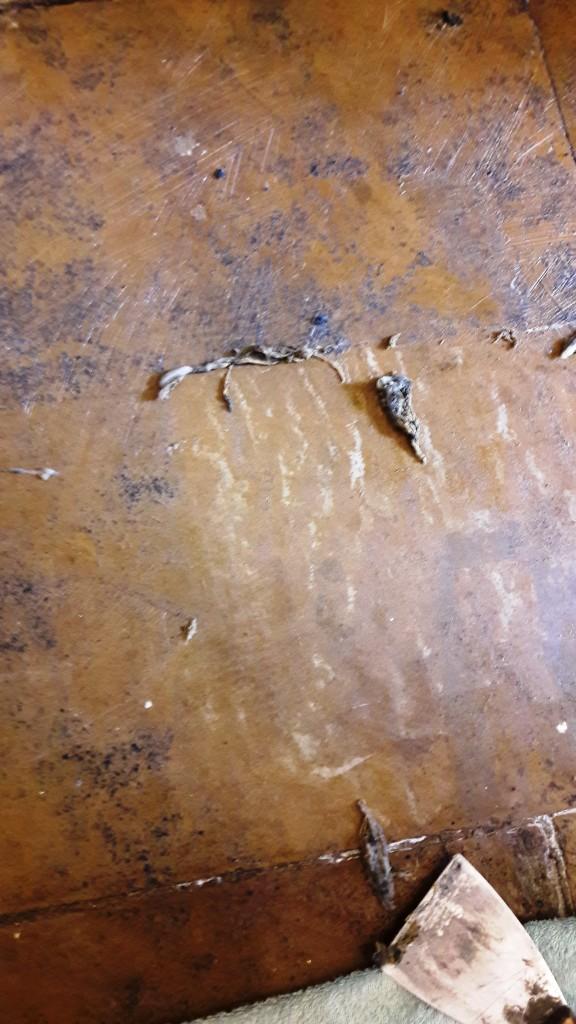 Yorkstone Hallway Restoration Carbrooke Scraping Away Softened Glue